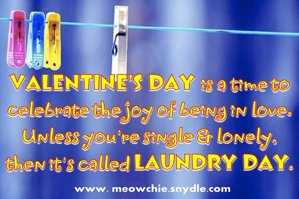 Valentines Day Quotes, Sayings and Messages - Pink Lover